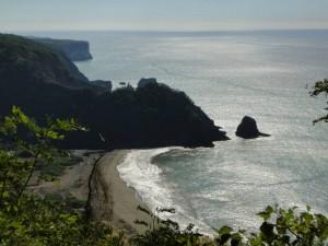 more coast