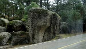 DSC01195 Elephant Rock