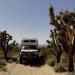 Weekend in Mojave Scenic Preserve thumb